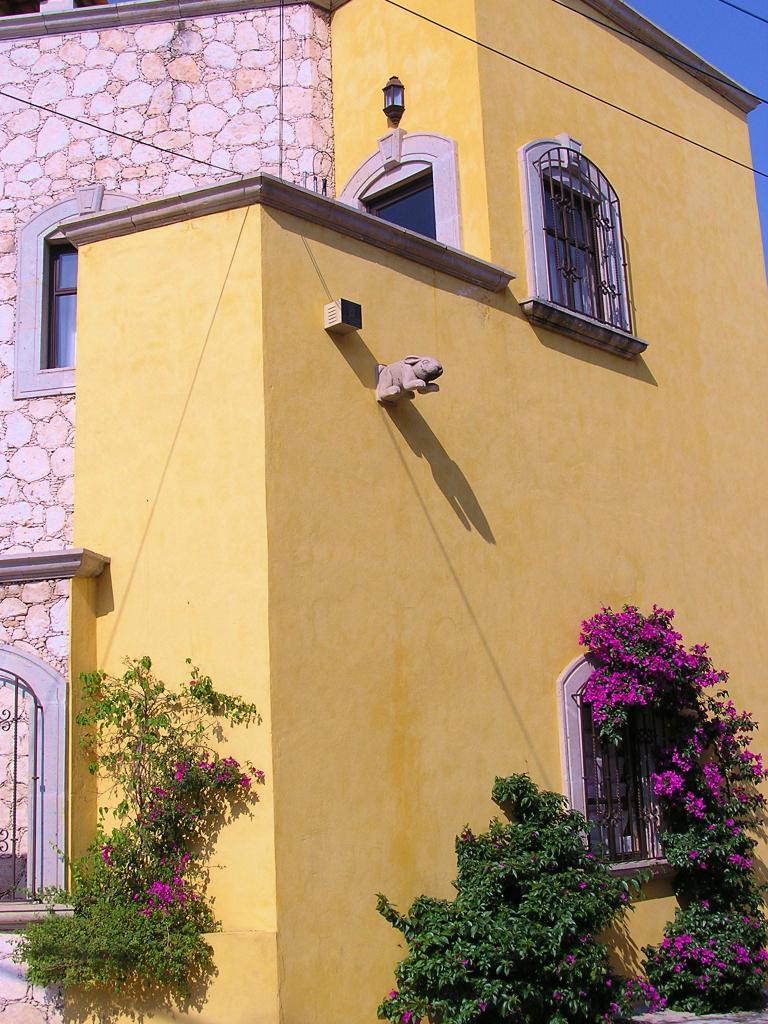 Decorative bunny drainage duct graces San Miguel de Allende colonial architecture.