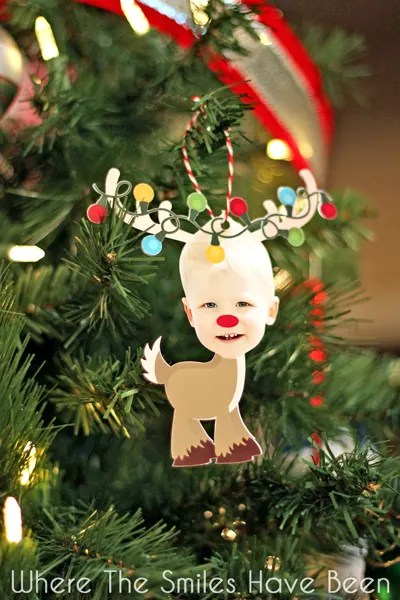 Reindeer Photo Ornament Christmas Card and Silhouette GIVEAWAY!