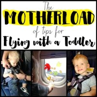 The MOTHERLOAD of Tips for Flying with a Toddler