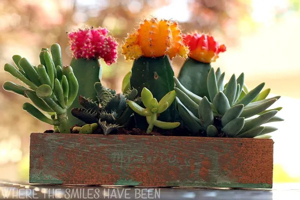 How to Make an Upcycled Faux Copper Succulent Planter | Where The Smiles Have Been