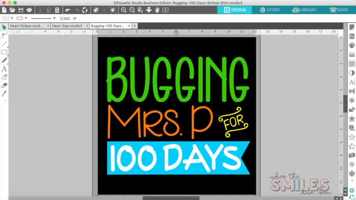 100 Days of School Shirt Idea: 'Bugging' My Teacher | Where The Smiles Have Been #school #100Days #100DaysOfSchool #100thDayOfSchool #schoolshirt #bugs #insects #HTV #HeatTransferVinyl #Silhouette #Cricut #CricutEasyPress