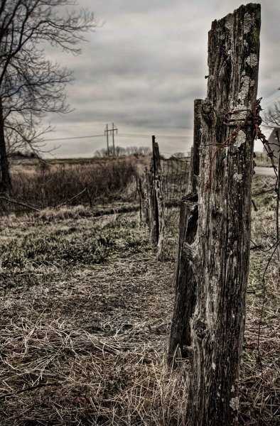 Forgotten Alabama William Woodward