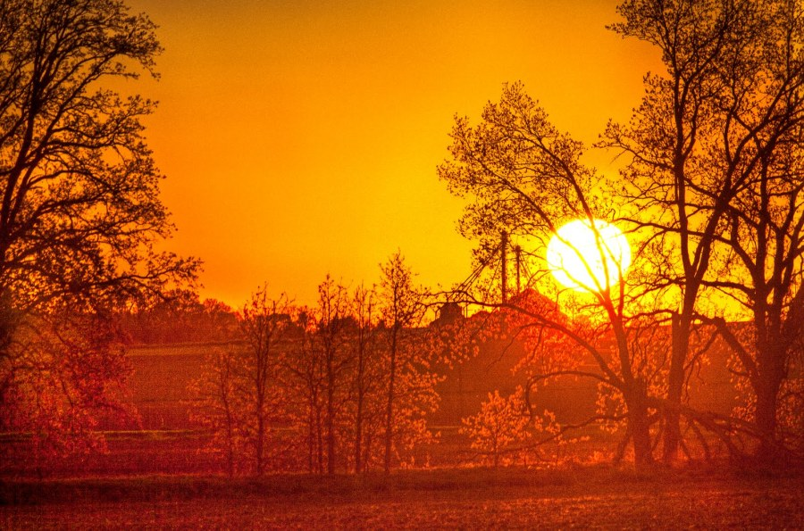Burning Sunset Trees Illinois William Woodward