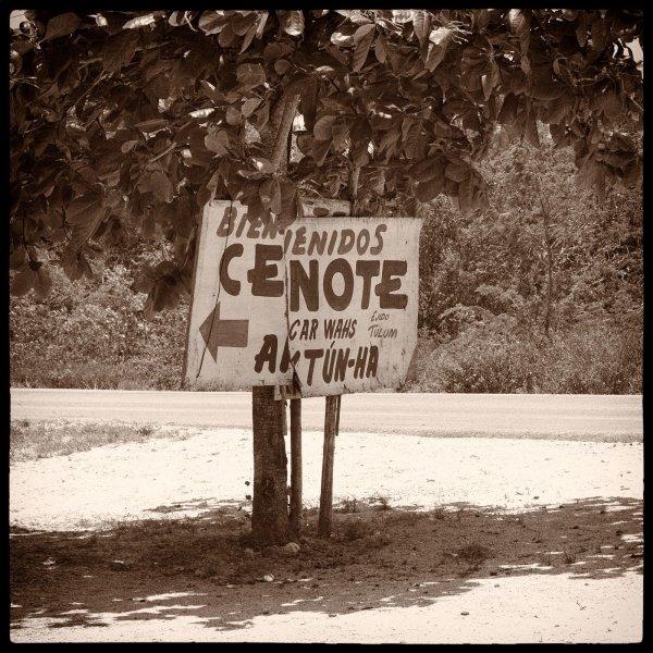 Bienvenidos Cenote Yucatan William Woodward