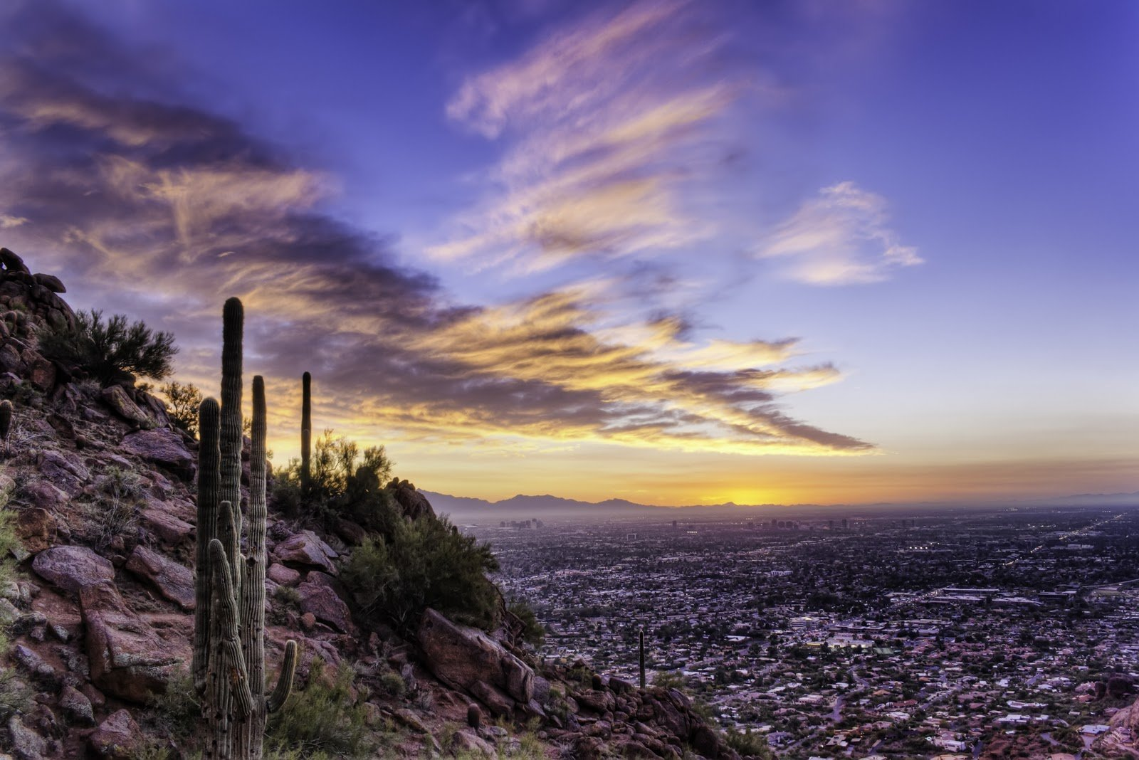 literary analysis of this is what it means to say phoenix arizona Check out our top free essays on this is what it means to say phoenix arizona symbolism to help you write your own essay.