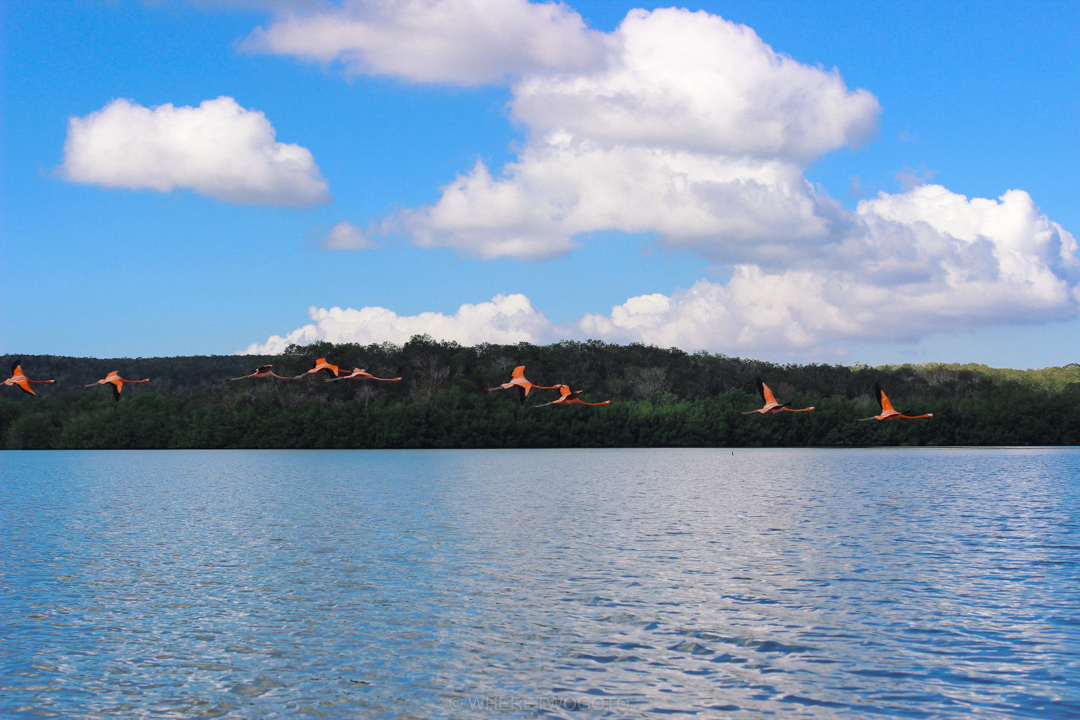 guanaroca lagoon cienfuegos