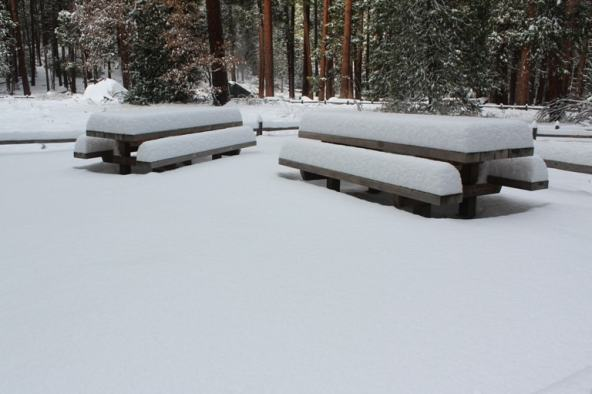 Snow piled on picnic tables