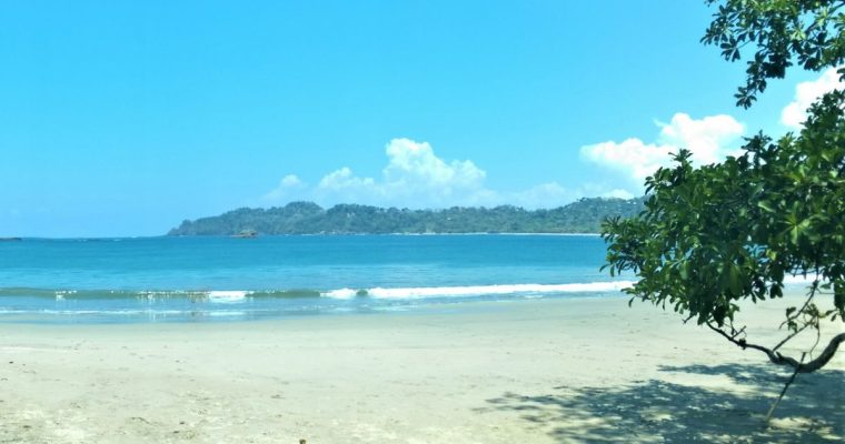 Best Manuel Antonio Adventure Guide
