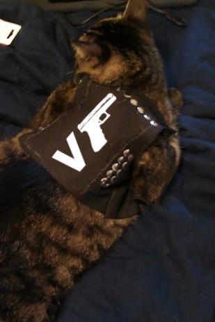 another-vgun-handgun-cat-in-vest