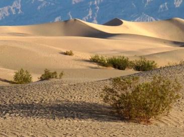 Death Valley 032