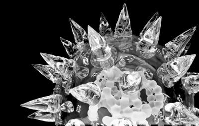 Virus - Biological Art
