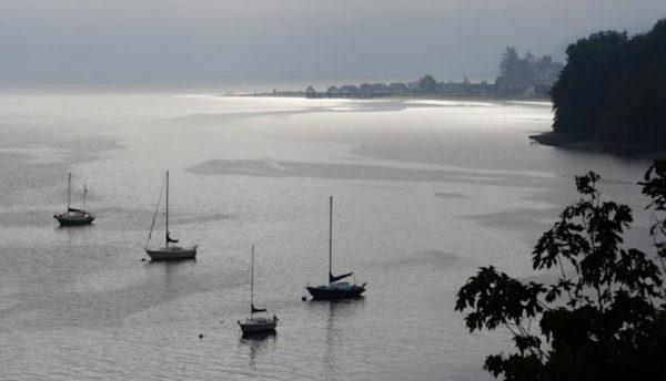 Langley Harbor (photo by Linda Schwarz)