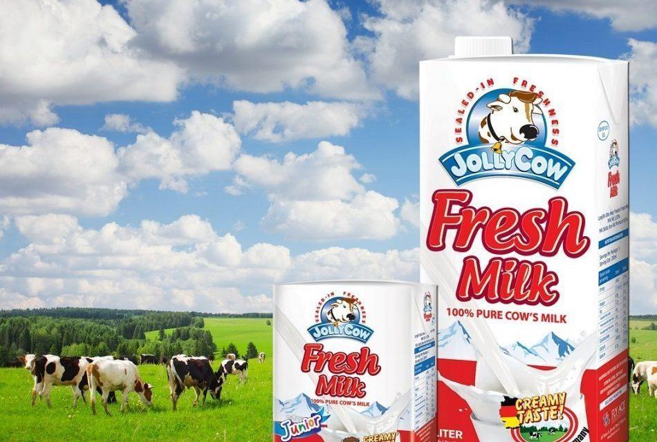 Happy Cows Produce Creamy Jolly Cow Fresh Milk