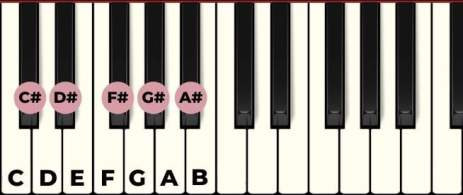 all notes on the piano with labels sharps