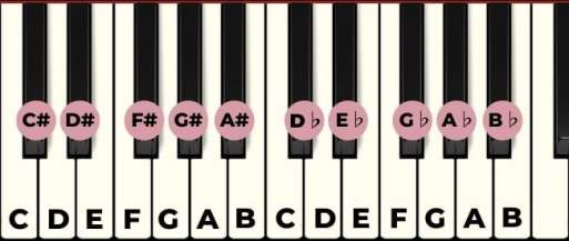 all notes on the piano with labels