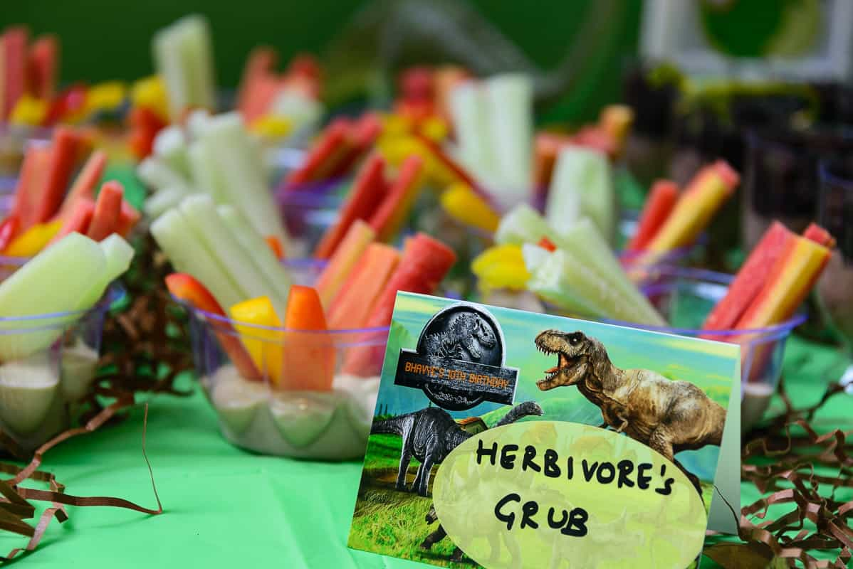 Dinosaur Theme Party for my 10 Year Old Whisk Affair
