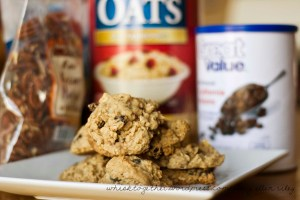 Oatmeal Raisin 2CR