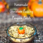Homemade Chocolate Pudding Pumpkin Patch