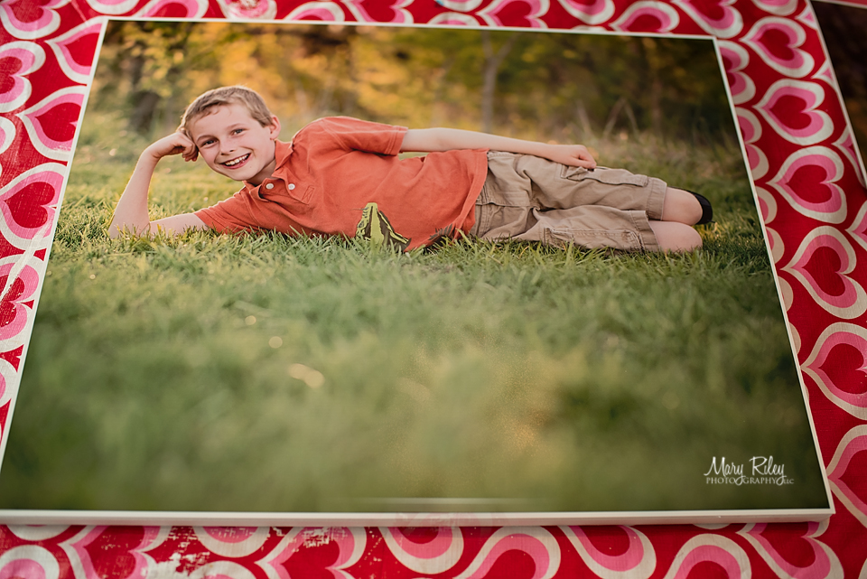 Canvas Wall 4 Mary Riley Photography Wentzville Missouri