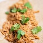 Super Fast (NO Forks!) Shredded Chicken | Instant Pot