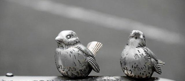 Yamazaki Birds