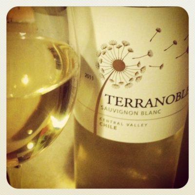 Thirsty Thursday :: Terranoble Sauvignon Blanc
