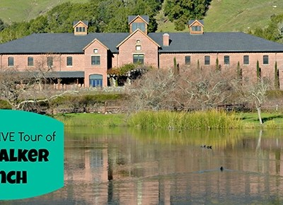 Take an Exclusive Skywalker Ranch Tour: Strange Magic Press Day #StrangeMagicEvent