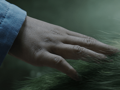 Pete's Dragon Teaser Trailer Now Available