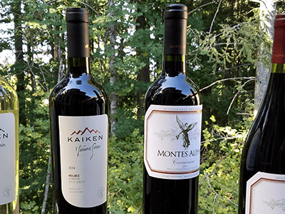South American Wines for your Labor Day Picnic