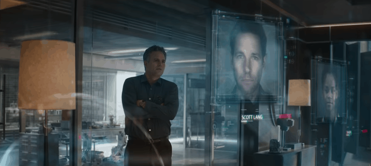 Avengers 4 End Game bruce banner missing people
