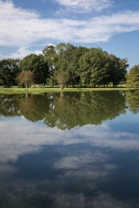 scenic - pond