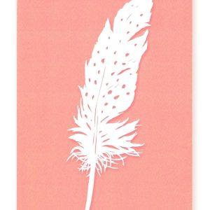 Postcard Feather