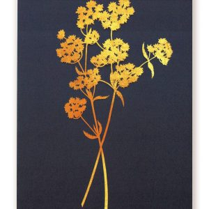 Postcard gold coloured flowers