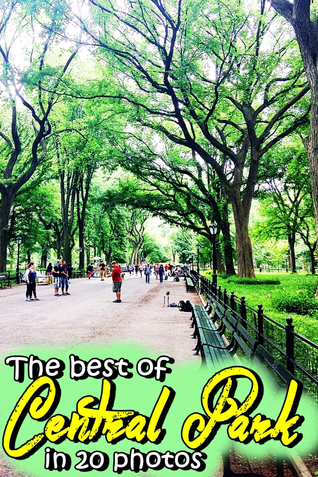 The best of Central Park in 20 photos