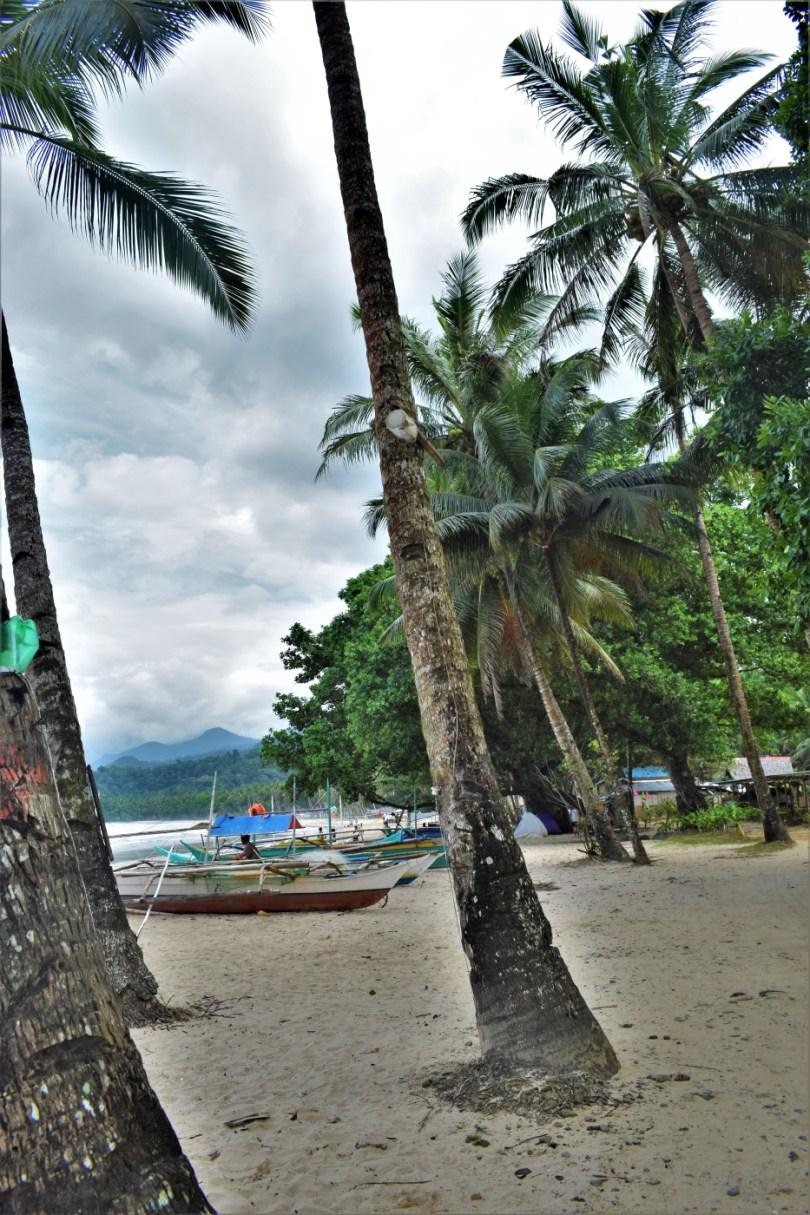 The Underground River Puerto Princesa Palawan Philippines