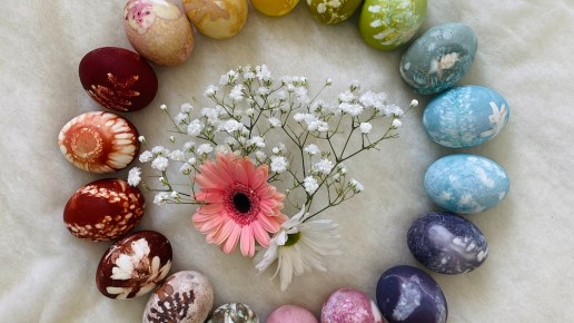 Natural Egg Dying