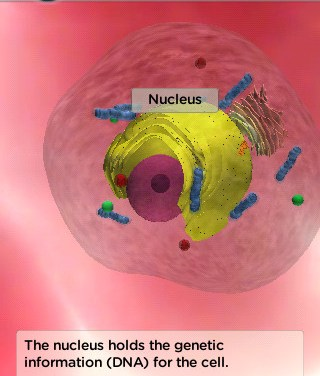 Explore Cells on Your iPad and IWB with Hudson Alpha iCell