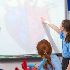 6 Essential Websites for Primary Science Teachers