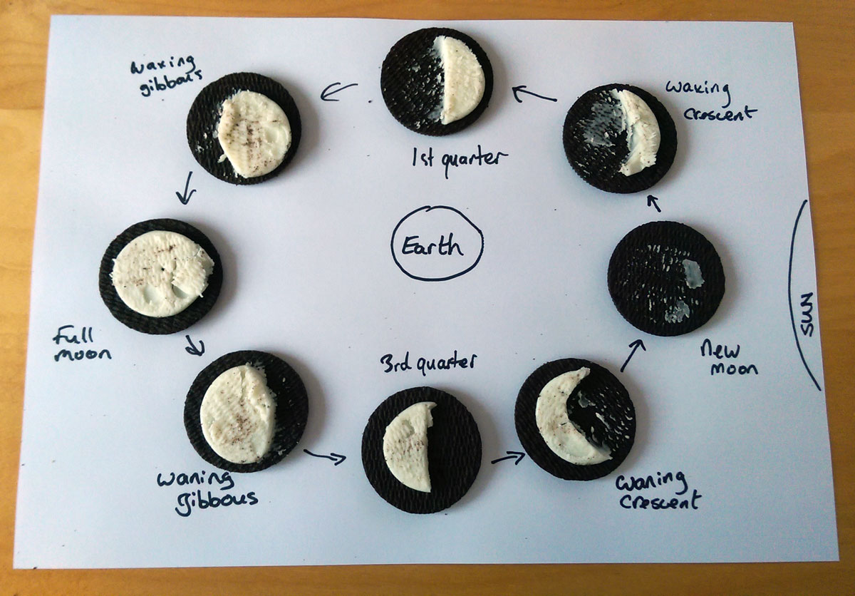 Quick Science Idea Oreo Cookie Moon Phase Model