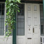 Doors of New Orleans