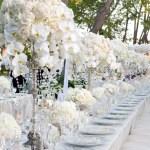 White wedding Wednesday