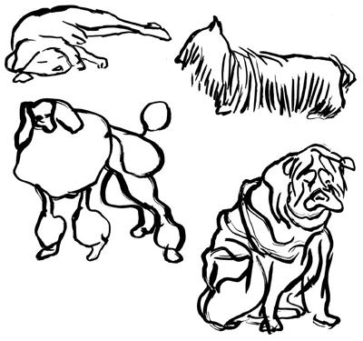 schinedogs