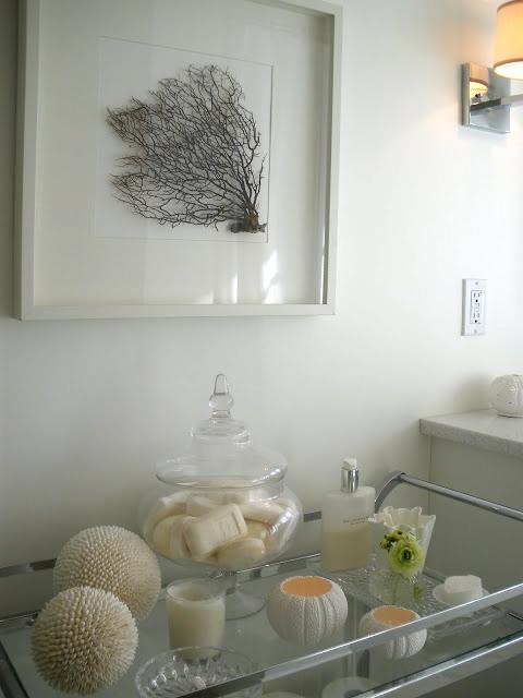 sea-urchin-bath