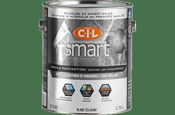 CIL-Doors_trim-exterior-paint-101
