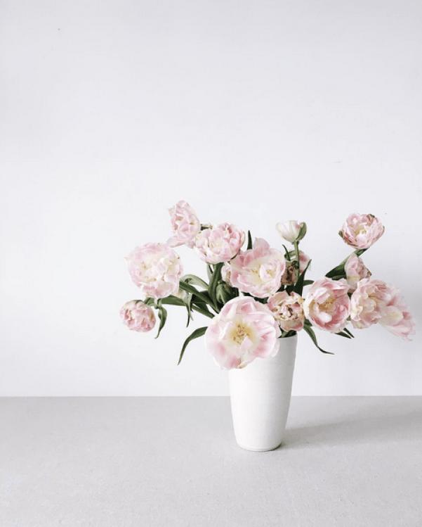 pink-tulips-leslie-shewring