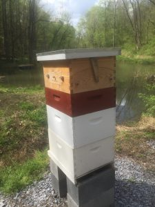 new split hive with flow hive