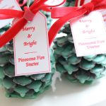 Create With Me~ Pinecone Fire Starters