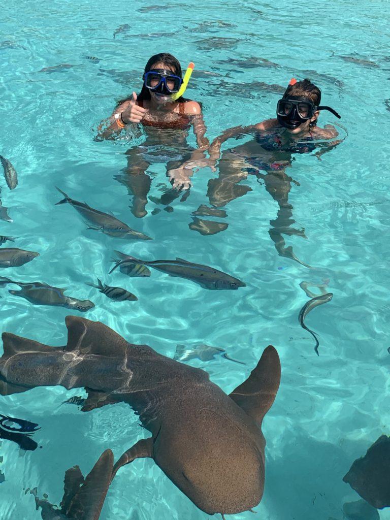 Exuma- Bahamas- swimming with the pigs- swimming pigs- vacation- family vacation- trip- beaches- Caribbean- Grand Isle Resort- Coco Plum Beach, ocean- beach swing- nurse sharks