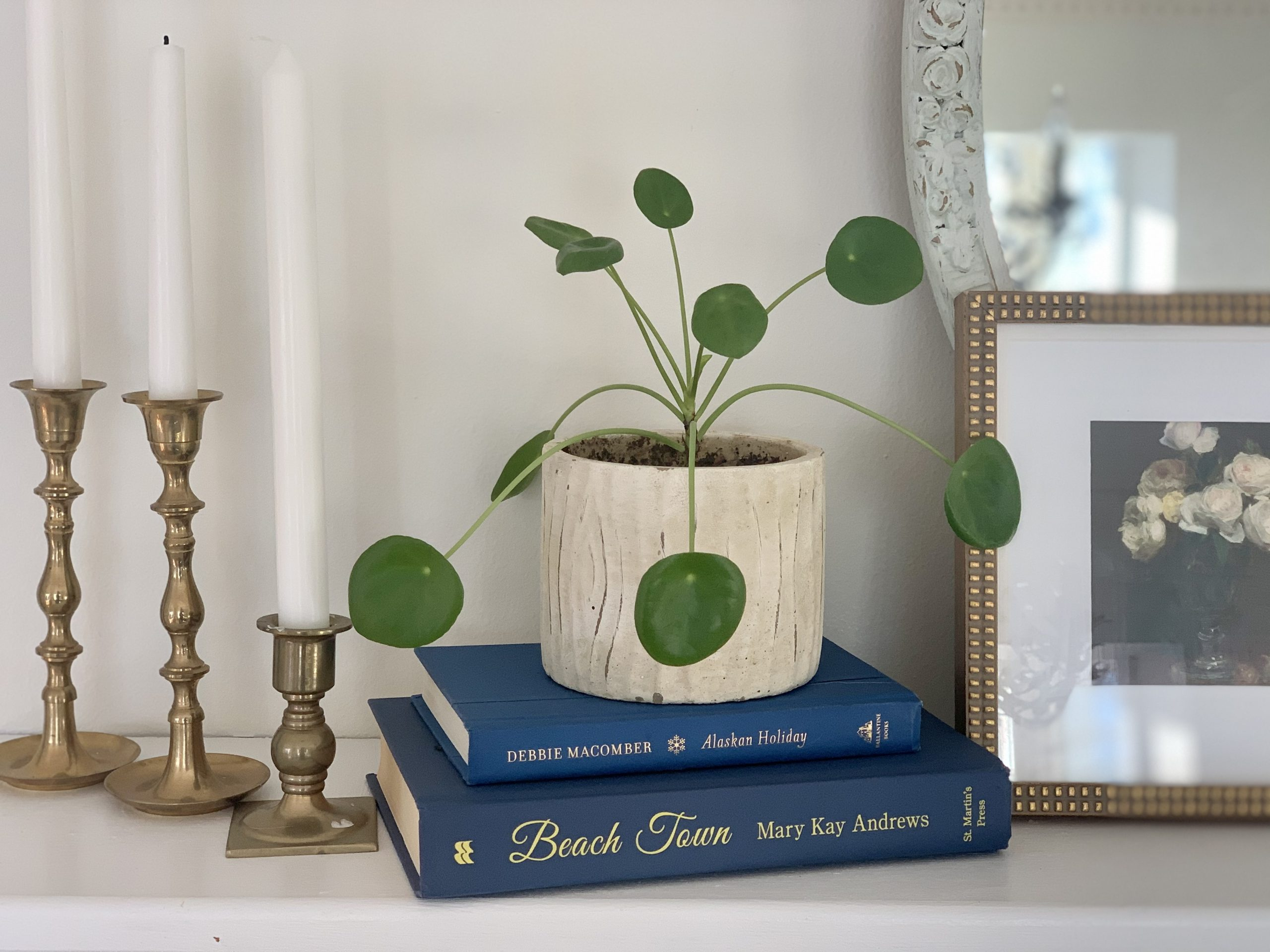Top 5 Decor Books & Styling Books in Your Home~ White Cottage Home &. Living
