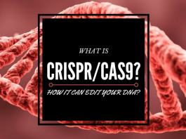 what is crispr/cas9 and how it can edit your dna